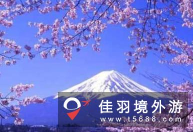 去日本旅游,你需要记住这几点